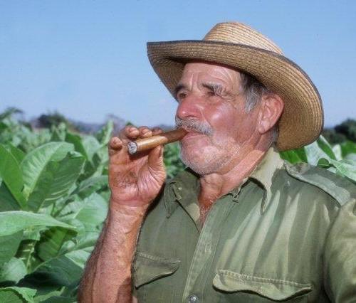 Farmer-Pinar-del-Rio